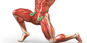 Where Is Your Hip Flexor?