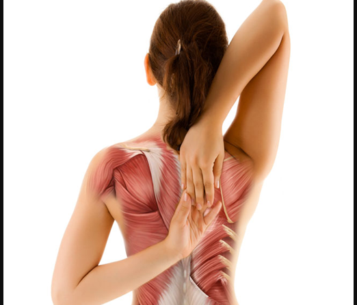Exercise To Relieve Upper Back Pain