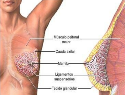 What is The Cause of Breast Pain