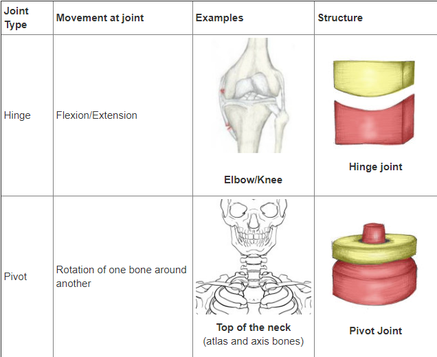 Type of joints
